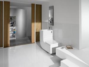 w-w-di-roca-dallinnovation-lab-di-roca-progetto-gabriele-e-oscar-buratti-sistema-compatto-vaso-lavabo-per-il-recupero-dellacqua-e-il-risparmio-idrico-01