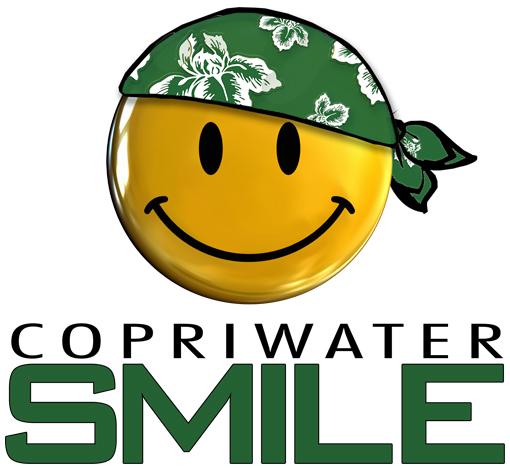copriwater-economici-smile