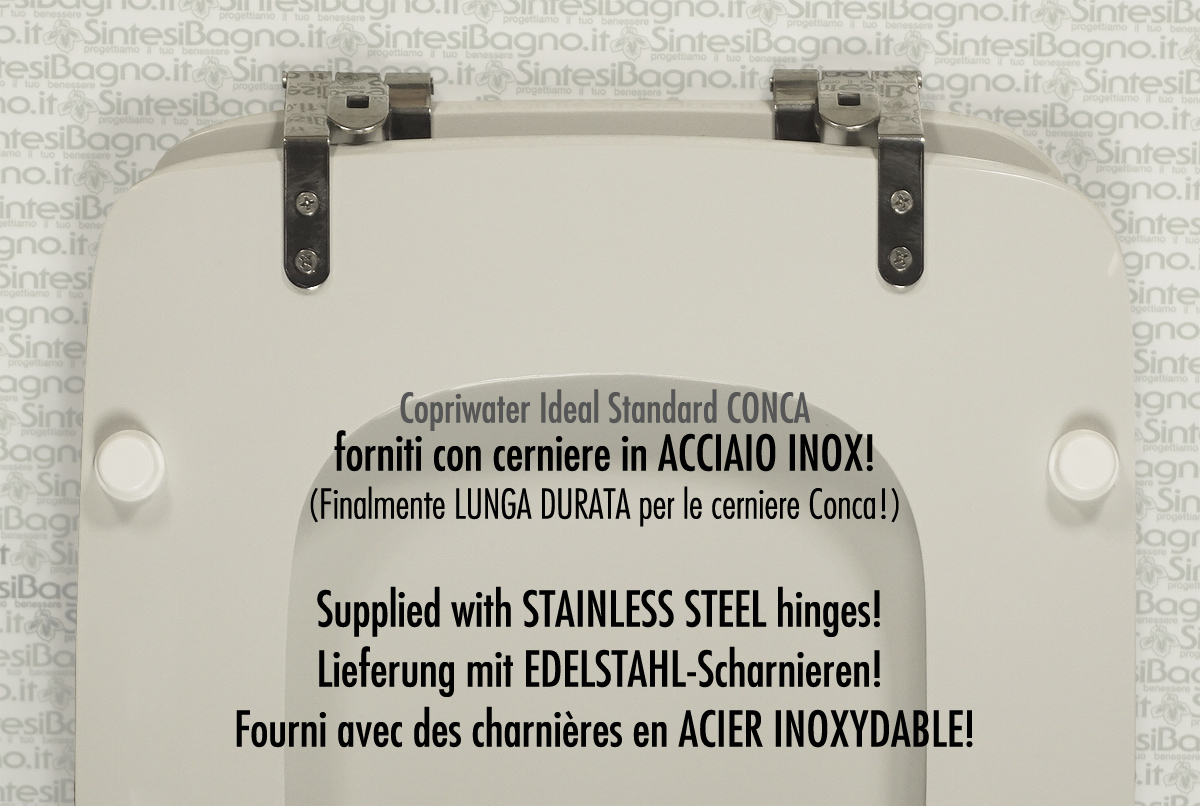Rottura cerniere vaso Ideal Standard Conca e soluzione del problema!